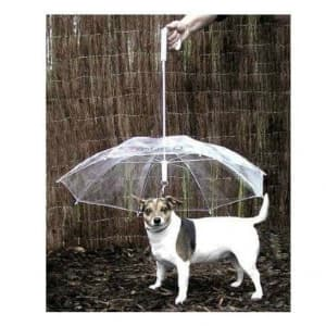 Umbrella Leash Combo for Dogs