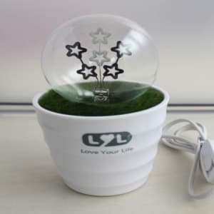 Romantic Flower Pot Lamp Night Light - Shooting Stars