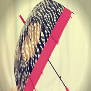 Stylish Zebra Print Pink Canopy Umbrella