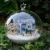 Christmas Gift Idea DIY Miniature House Model Glass Globe Ornament with Led Lights Blue House