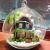 Voice Control Led Lights DIY Miniature House Model Glass Globe Ornament
