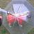 Umbrella Leash Combo for Dogs